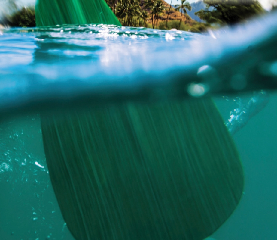 a view of a SUP paddle underneath the water