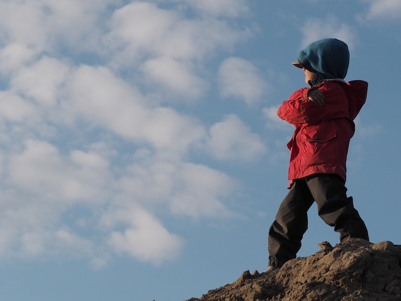 A little boy in a red jacket stands on a hill and looks out at the sky.