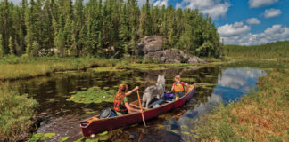 two people canoeing through a lake with their dog and lots of gear in the boat