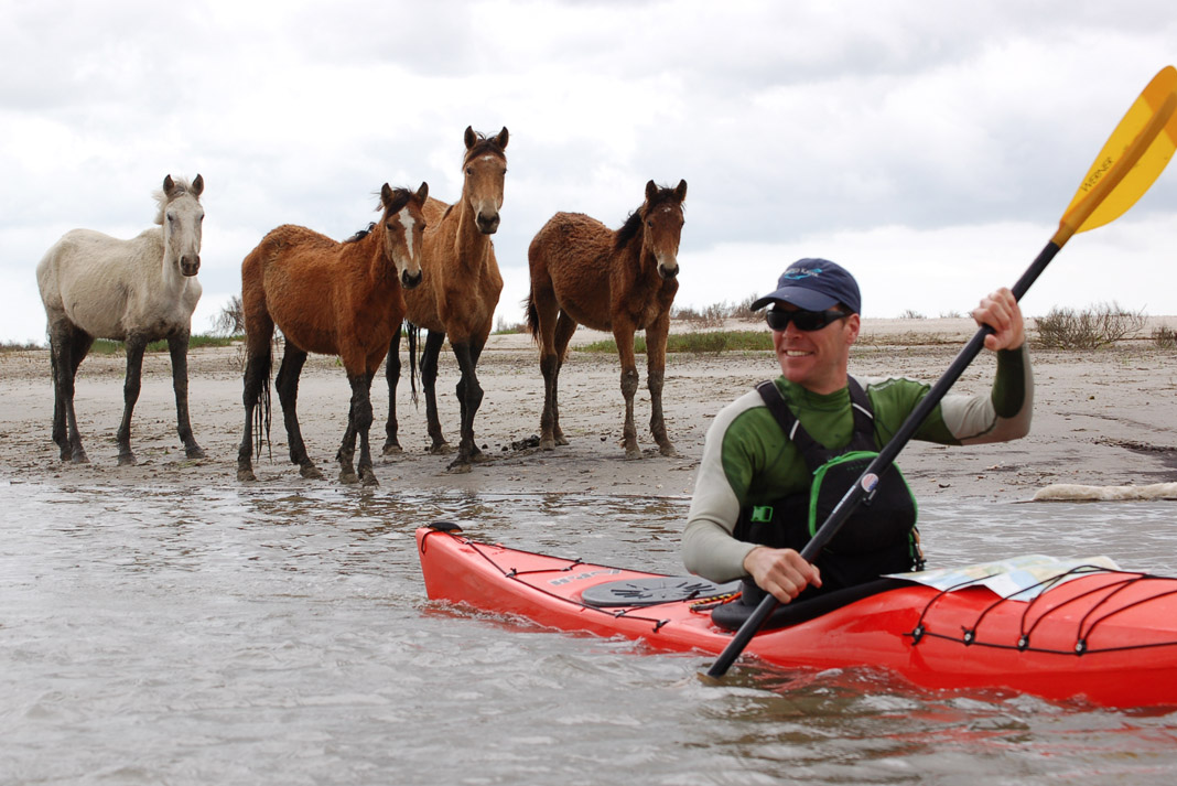 man paddling red kayak with three ferrel horses behind him