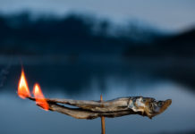 two eulachon fish on fire