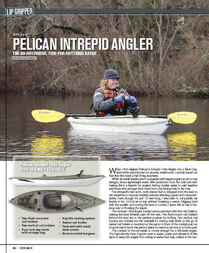 KAv8i1 Splash Pelican Intrepid