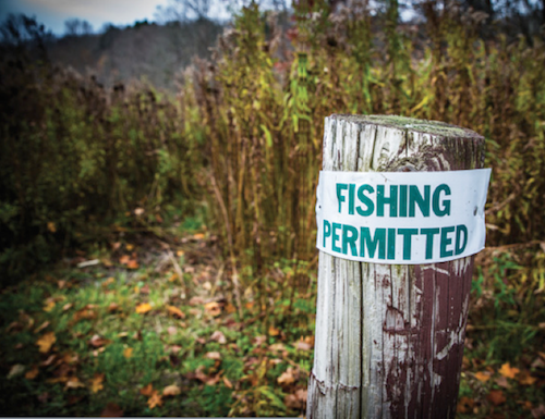 There are so many spots to fish in Upstate New York, the signs even point the way.