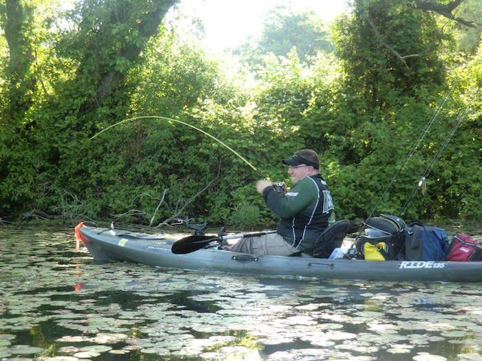 Structure like lily pads provide bass with ambush points and shade all summer.