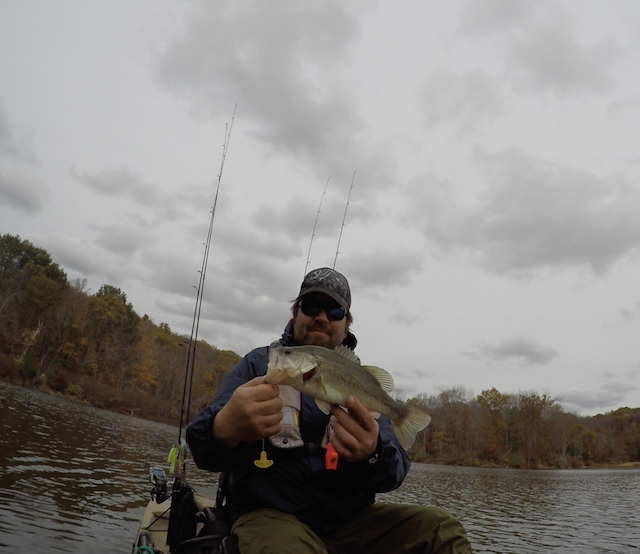 Fall is a great time to hook into a trophy largemouth bass. Photos: Charles Daugherty & Charles Breon