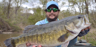 angler holds up a trophy bass