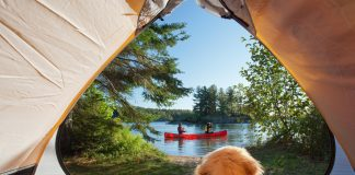 a puppy looking through a tent at two people paddling a canoe on a lake.