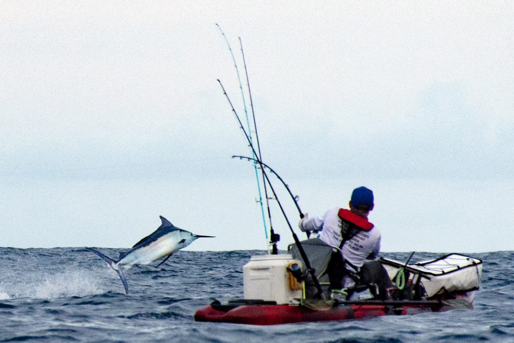 Adam Fisk's Black Marlin