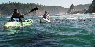 two fisherman in cobra kayaks