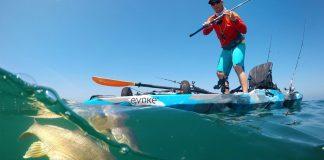 Man catching a fish on his standup fishing kayak