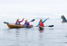 three women paddling touring kayaks and pointing at scenic rocks