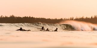 several paddleboarders catching waves to surf on a breaking wave