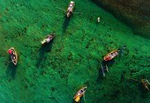 an aerial shot of several fishing boats paddling in Sri Lanka