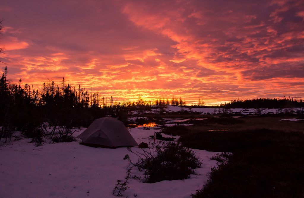 Tent in snow with a pint sunrise and red sky in Newfoundland