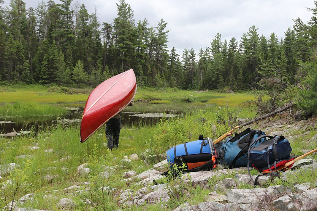 Canoeist carries canoe on a portage in Temagami