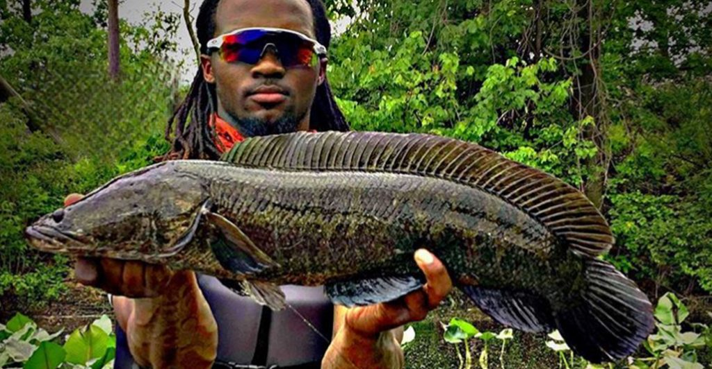 Neaven Reevey with a snakehead Southern New Jersey