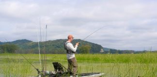 A kayak angler stands to fish for bass amongst the reeds.