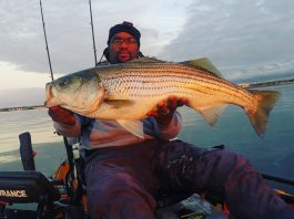 How To Fish For Striped Bass At Night