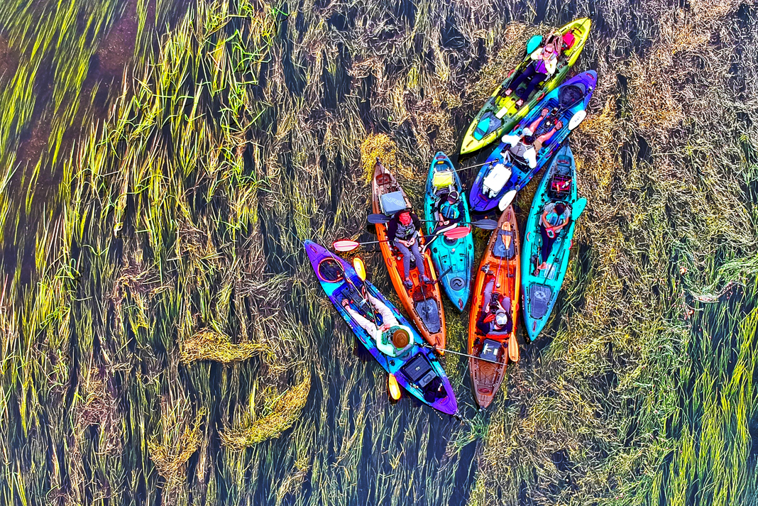Overhead shot of group of kayakers.