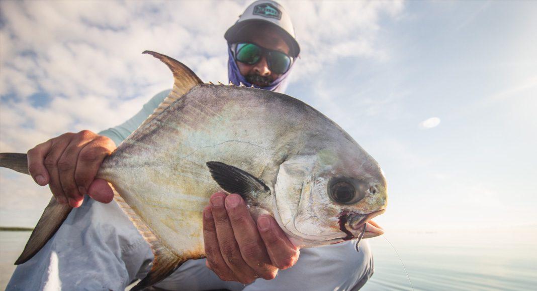 Permit are the toughest fish to score in a flats slam. | Photo: Alex Tejeda