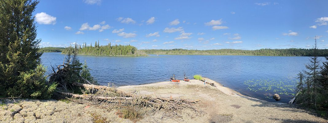 Two fishing kayaks are pulled up on shore with pine trees in the background.