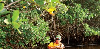 Action in a secret angling oasis. Photo: Dan A Brown