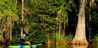 kayak angler fishing in St. Marks Florida