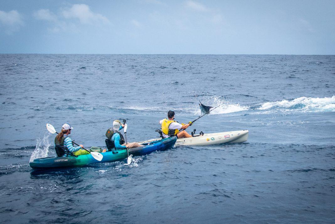 anglers fighting a big billfish