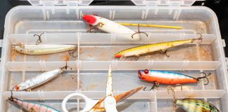 Tackle box full of fishing lures with rust