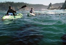 two fisherman in cobra kayaks