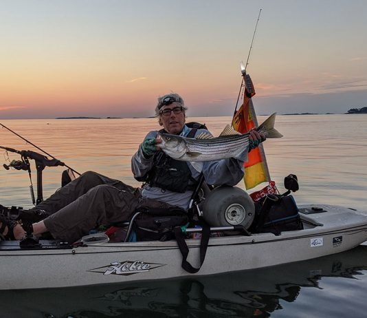 kayak angler holds up striped bass caught with tube and worm rig