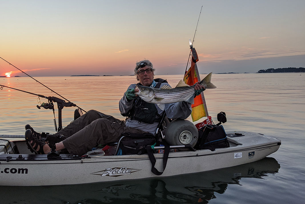 Striped bass can't turn down the tube and worm. | Photo: Dennis Suler