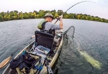 Minnesota muskie are a big reason to visit the state with 10,000 lakes. | Photo: Michael Thompson