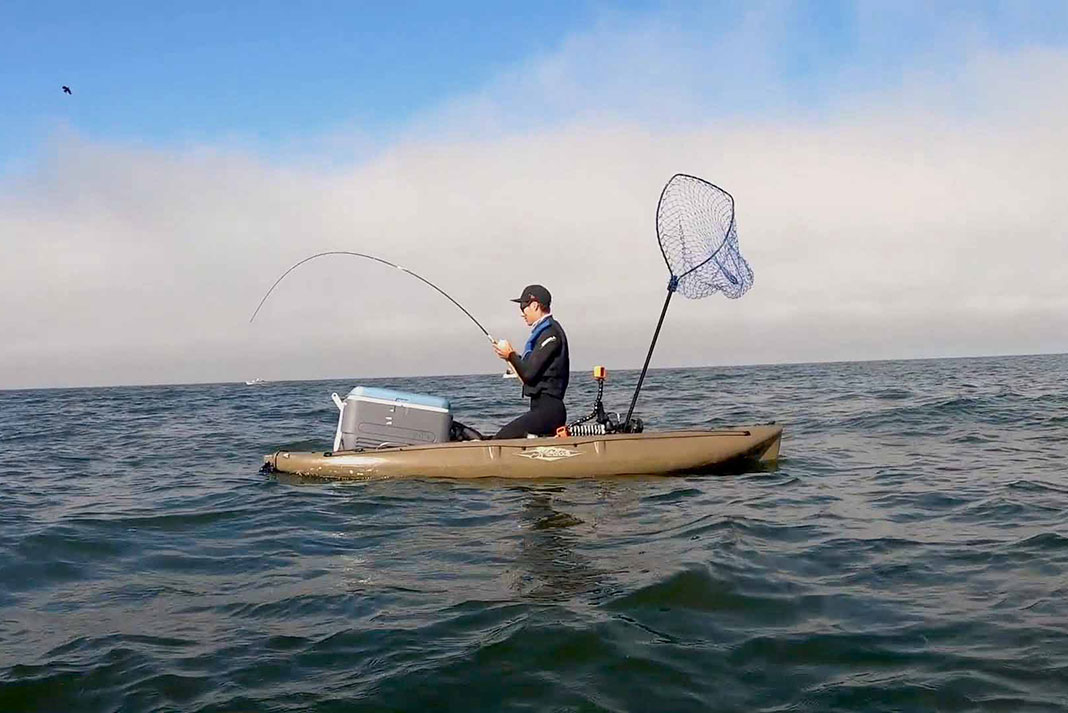 kayak fisherman kneels in his boat while reeling in a big lingcod