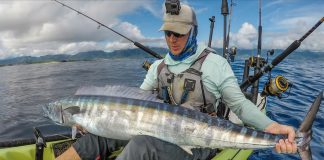kayak fisherman holds up a large wahoo fish he caught