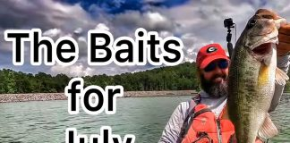 Flukemaster's top 5 baits and lures for July bass fishing