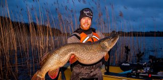 man holds up a big northern pike caught while fishing from a kayak