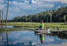 man kayak fishing on wheeler lake in alabama