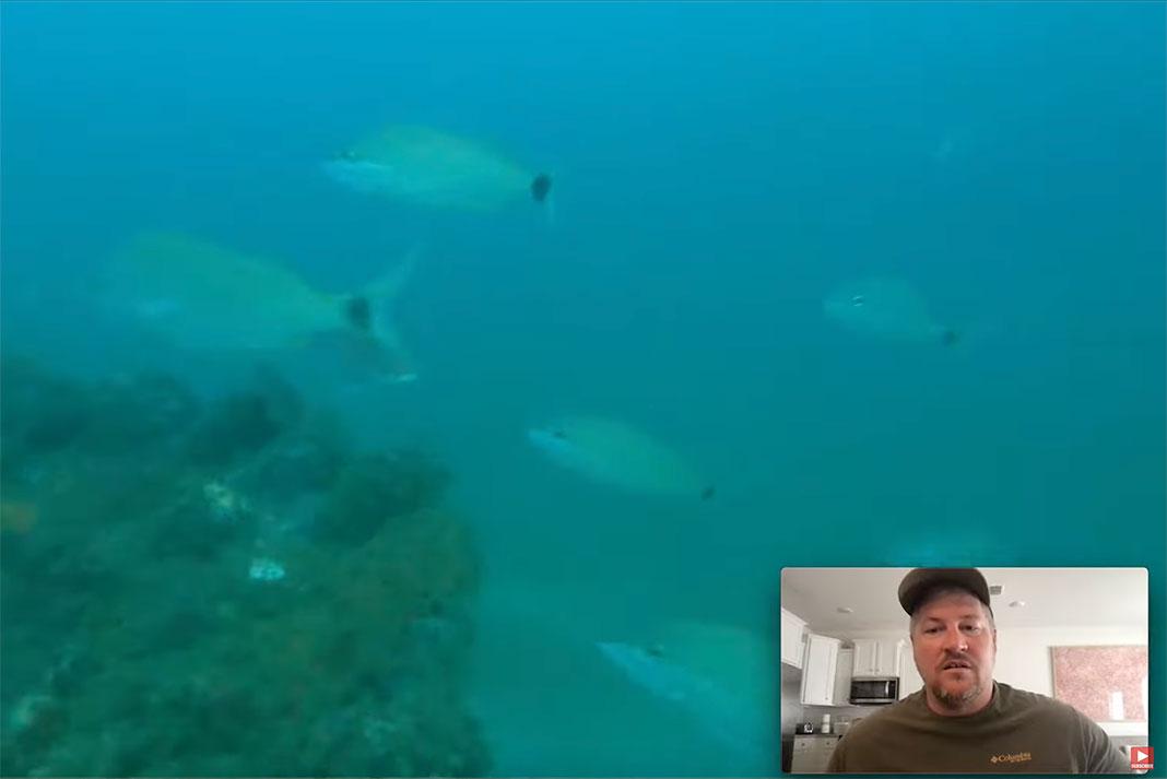 man reviews underwater footage from his GoPro Hero 9