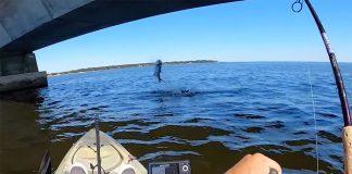 kayak angler fishes for tarpon under bridge