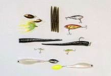 a selection of finesse fishing lures laid out on a white background